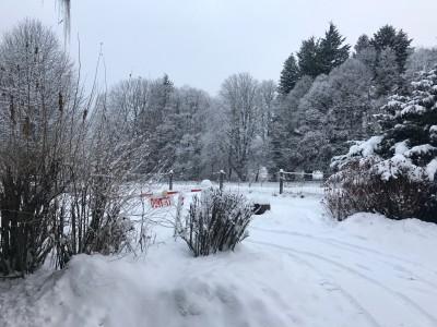 neige 16-01..